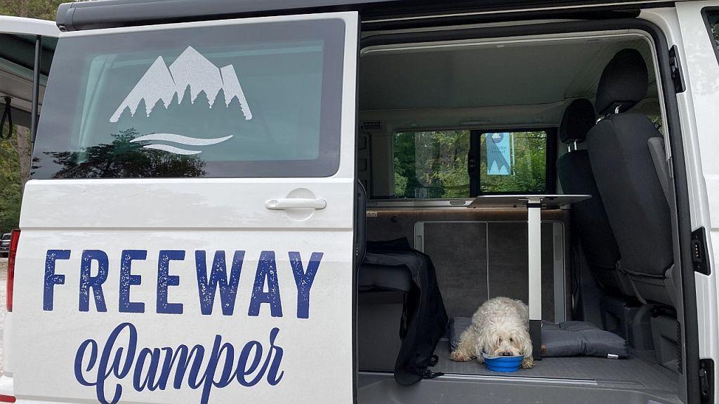 Näpfe fürs Camping mit Hund in einem VW T.6 California Ocean